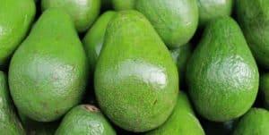 Avocado and Walnut Salad | ModernCalisthenics.com